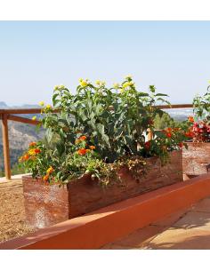 Jardinera Safor