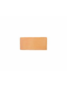 Baldosa Barro 12,5x25x2